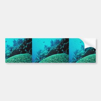 Arrecife de coral etiqueta de parachoque