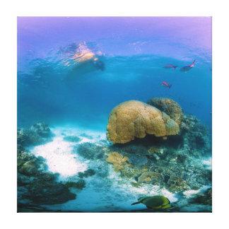 Arrecife de coral cerca de la isla de la garza impresiones de lienzo