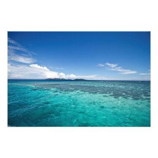 Arrecife de coral del Fijian Cojinete