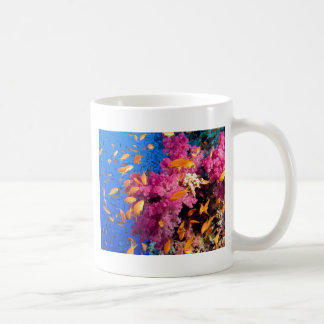 Arrecife de coral hermoso Naturescape Taza De Café
