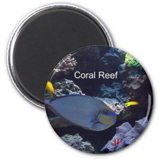 Arrecife de coral iman de frigorífico