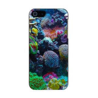 Arrecife de coral magnífico carcasa de iphone 5 incipio feather shine