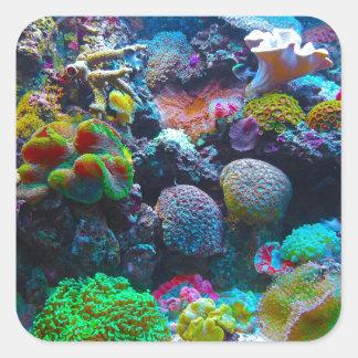 Arrecife de coral magnífico pegatina cuadrada
