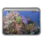 Arrecife de coral, opinión del uderwater funda para macbook air
