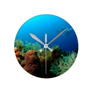 Arrecife de coral, parque nacional seco de reloj redondo mediano