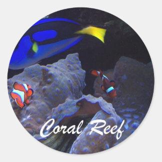 Arrecife de coral pegatinas redondas