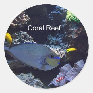 Arrecife de coral pegatina redonda