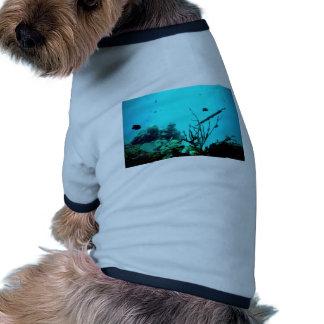 Arrecife de coral camisetas de perrito