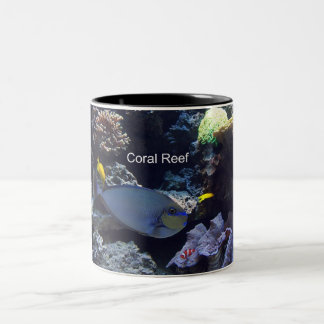 Arrecife de coral taza