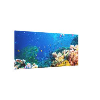 Arrecife de coral y pescados tropicales lona envuelta para galerias