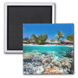 Arrecife de coral y un centro turístico tropical imanes de nevera