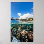 Arrecife de coral y un centro turístico tropical impresiones