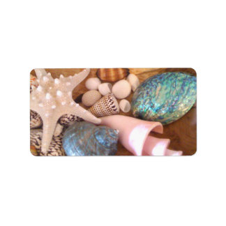 arreglo múltiple de la cáscara del mar del colorfu etiquetas de dirección
