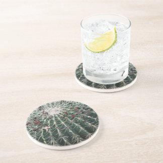 arrel Cactus Southwest Design Desert Plants Beverage Coasters