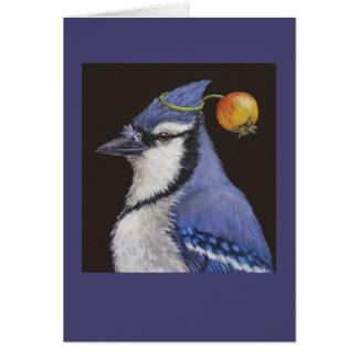 arrendajo azul con la tarjeta de la manzana de can