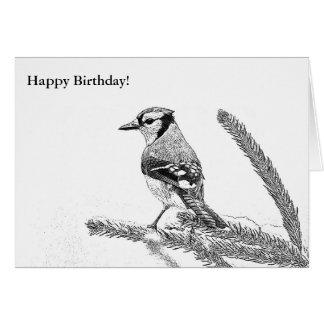 Arrendajo azul en tarjeta de cumpleaños del