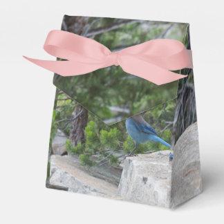 Arrendajo azul estelar cajas para detalles de boda