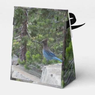 Arrendajo azul estelar cajas para regalos
