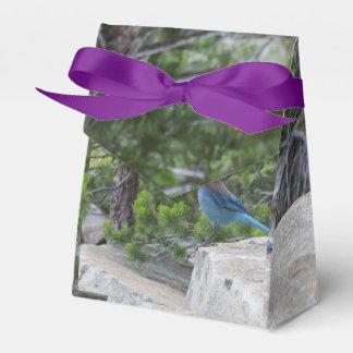 Arrendajo azul estelar cajas para regalos de fiestas