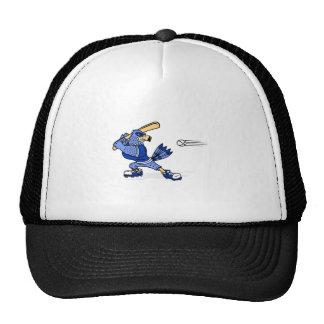 Arrendajo azul que juega a béisbol gorras