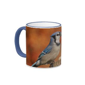 Arrendajo azul taza de café