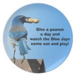 Arrendajo azul y un cacahuete plato de cena