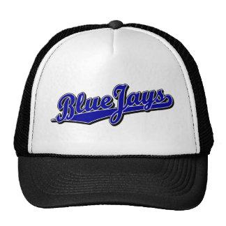 Arrendajos azules en azul gorra