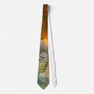 ARRM.01 - Asteroid Redirect and Retrieval Mission Neck Tie