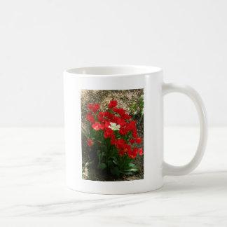 Arroje y retirándose tazas de café