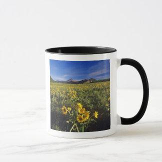 Arrowleaf balsomroot wildflowers in Waterton 2 Mug