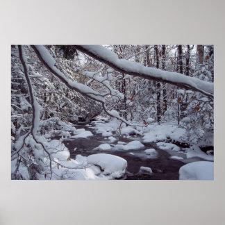 Arroyo de Vermont Nevado Póster