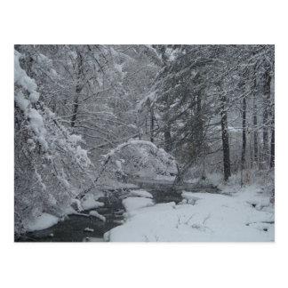 Arroyo nevado tarjetas postales