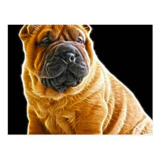 Arrugas, el perro de perrito chino de Shar Pei Tarjeta Postal