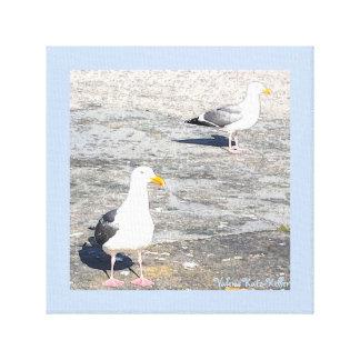 Art Canvas Seagulls
