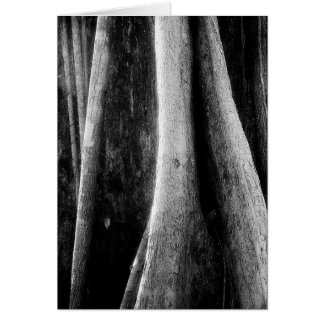 Art Card: Amazon Rainforest Black and White Roots Card