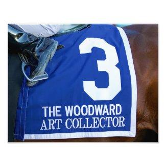 Art Collector Saddlecloth Photo Print