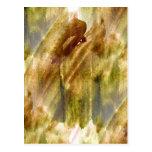 art green, brown hand paint background seamless postcard