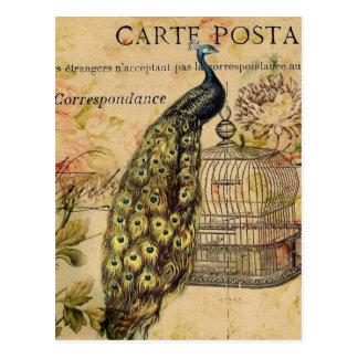 art nouveau vintage peacock french provincial postcard