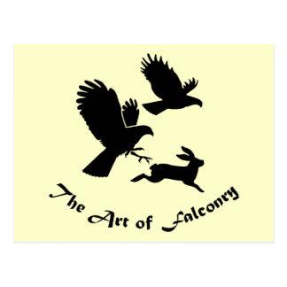 Art of Falconry - Harris Hawks Postcard