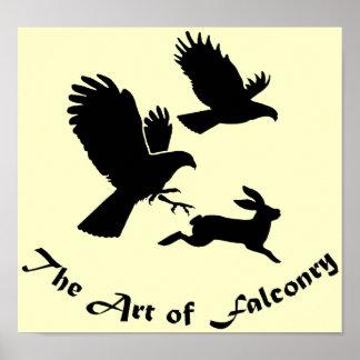 Art of Falconry - Harris Hawks Poster