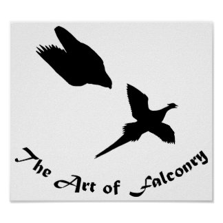 Art of Falconry- Peregrine Falcon Poster