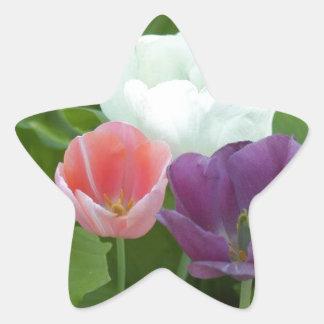 Art of Tulips Star Sticker