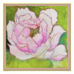"""ART-ON-CANVAS: Peony Pink 12""""x12"""" Poster"""