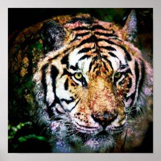 Art - Poster Tiger Mixed Media