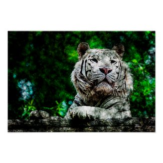 Art - Poster White Tiger Mixed Media
