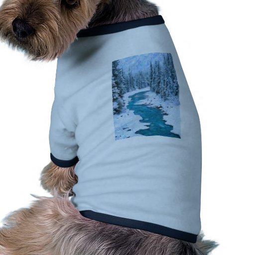art- River Pet Clothes