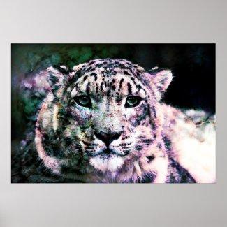 Art - Snow Leopard Mixed Media Posters