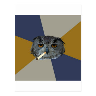 Art Student Owl Advice Animal Meme Postcard