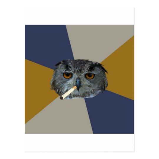 Art Student Owl Advice Animal Meme Postcard
