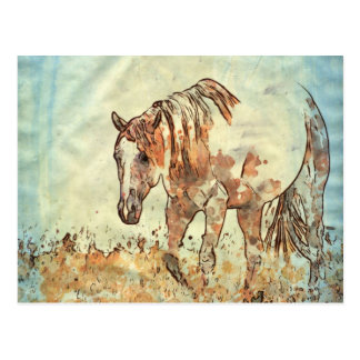Art Studio 12216 Horse Postcard